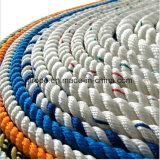 3 de Nylon Kabel van de bundel