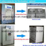 As portas inclinadas dobro ensacaram o escaninho de armazenamento do gelo com sistema frio da parede