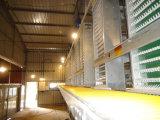 Hightop Huhn-Rahmen-Geflügel-Landwirtschaft-Qualität überlagern Rahmen für Legehennen