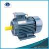 Motor 132kw-6 Cer-anerkannter hohe Leistungsfähigkeit Wechselstrom-Inducion