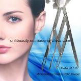 눈썹 Microblading 귀영나팔 디자인을%s 황금 비율 분배자