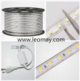 110V-220V luz de tira mutável do diodo emissor de luz da cor 5050 para a decoração do edifício
