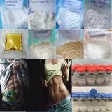 Polvo anabólico de la hormona del crecimiento del músculo del acetato de la testosterona de la pureza de las ventas directas 99.5% de la fábrica