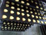 Macchina multifunzionale del biscotto del deposito Kh-400/600 per la macchina dell'alimento