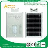 Lámpara al aire libre nuevo 15W todo del LED en una luz de calle solar integrada