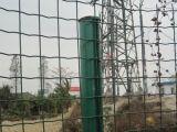 Nueva cerca artificial Eurofence que cultiva un huerto del jardín de la cerca