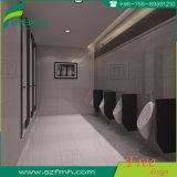 Известные перегородка и оборудование туалета фирменного наименования