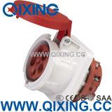 Plot industriel rond de fiche de Pin de l'eau et en bois IEC309-2
