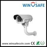 Camera van de Veiligheid CCD van IRL PTZ van de Camera van de Koepel van de hoge snelheid de Binnen en Openlucht