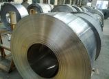 el final 201 304 2b laminó bobinas del acero inoxidable