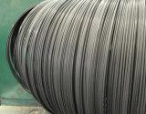 Chq Fio de aço carbono SAE1022 para fabricação de parafusos