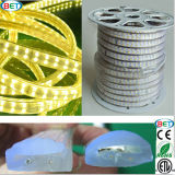 120LED / M Double rangée LED Strip Light RGB LED Light Rope