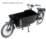 Длинние Bikes Bakfiets для ребенка носят