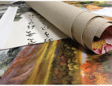 Het Schilderen van het Canvas van de Druk van het canvas