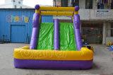 Sommerzeit-im Freien aufblasbares Wasser-Plättchen für Kinder