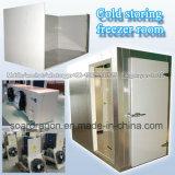 Sitio frío del congelador que salva