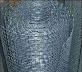 Rete metallica tessuta di /Crimped della rete metallica di /Square della rete metallica