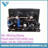 Охлаженный воздухом блок низкой температуры конденсируя с компрессором Frascold