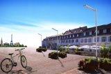 Уличный свет конструкции 25W СИД рабата самый новый солнечный с датчиком
