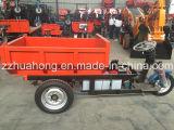 Mine/3のための小型ダンプトラックは電気三輪車または貨物ダンプトラックの価格を動かす