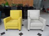 Sofá del cuero genuino de la sala de estar (C462)