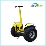 Rad-elektrischer Roller der Qualitäts-zwei mit Watt 1000*2