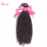 ブラジルの加工されていない人間の毛髪の拡張ねじれた巻き毛の卸し売りバージンの毛