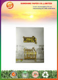 Бумага завальцовки короля Размера Smoking (бумага 14GSM)