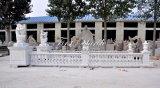 De Balustrade van Carrara van Metrix voor Decoratie & Bouwmateriaal mbal-001 van het Huis