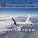 Международный товароотправитель перевозимого самолетами груза снабжения экспедитора от Китая к всемирно