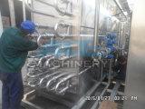 Leite Sterilized que faz a máquina 10t/Day (ACE-CG-Q6)