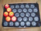 Bandejas plásticas disponibles para la fruta y verdura que empaqueta para el tomate, la patata, Apple etc