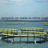 PE do fio da alta qualidade UHMWPE para a pesca comercial