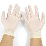Non guanti a perdere dell'esame di sterilizzazione