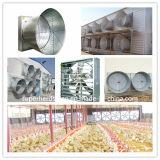 Casa de pollo industrial prefabricada ligera de la estructura de acero