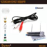 Диктор USB AMP профессионала усилителя MP3 цифров LCD портативный
