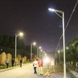 Bluesmart 80Wの太陽電池パネル鳥防ぐとげを搭載する屋外の統合されたLEDの通りの庭ライト