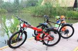a bicicleta 1000W elétrica gorda, neva bicicleta elétrica