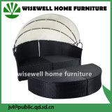 Weidenrattan-runde Sofa-Möbel mit Sitz 4 (WXH-009)