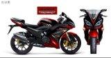 Motorrad (YL200-6E) laufen