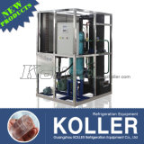 3000kg Tube Ice Maker Machine nach Kolumbien