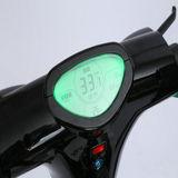 Roue deux 13 scooter de moteur se pliant du noir 250W de pouce