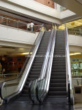 Vvvf Control Indoor Escalator mit 35 Degree 1000mm Width Step