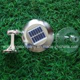 Indicatori luminosi esterni della parete Solare-Alimentati /Indoor