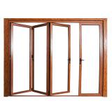Patio Door (120-SR) de Coated Aluminum Sliding Glass del polvo