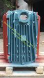 Pièce malléable faite sur commande de bâti de fer d'OEM pour la pièce 3gzf114031-3 de moteur