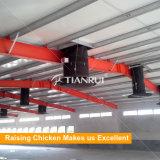 Tianrui 판매를 위한 자동적인 가금 환경 통제 헛간 장비