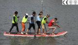 """Belüftung-materielle Surfbretter, die Kaya für Verkauf (Riese 15 ' 4, fischen """")"""