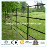 Загородка сада металла порошка Coated/напольная загородка металла