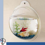 PMMA Material Acrylic Fish Bowl für Wall mit Compete Price